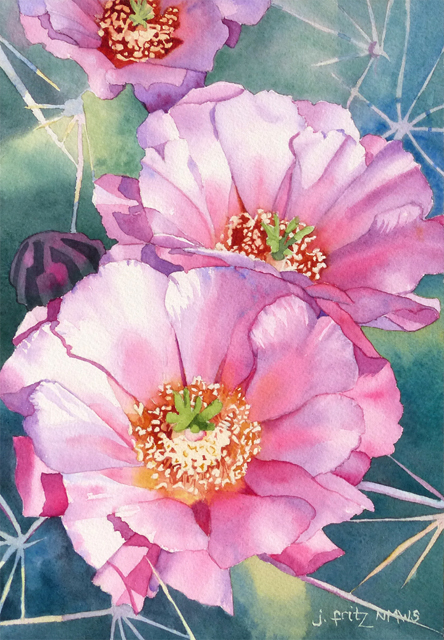 """Cactus Rose"" Watercolor by Jane Fritz"